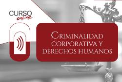 Cursos online, Criminalidad corporativa y Derechos Humanos