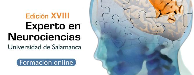 Experto online en Neurociencias
