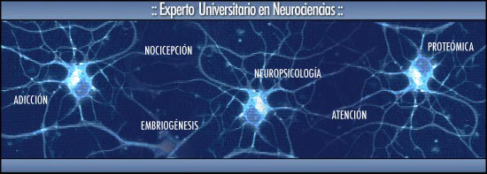 Diploma de Especialización OnLine en Neurociencias